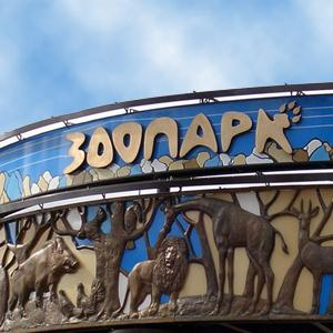 Зоопарки Духовщины